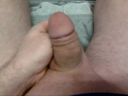 A hard dick penis cock and soft penis cock
